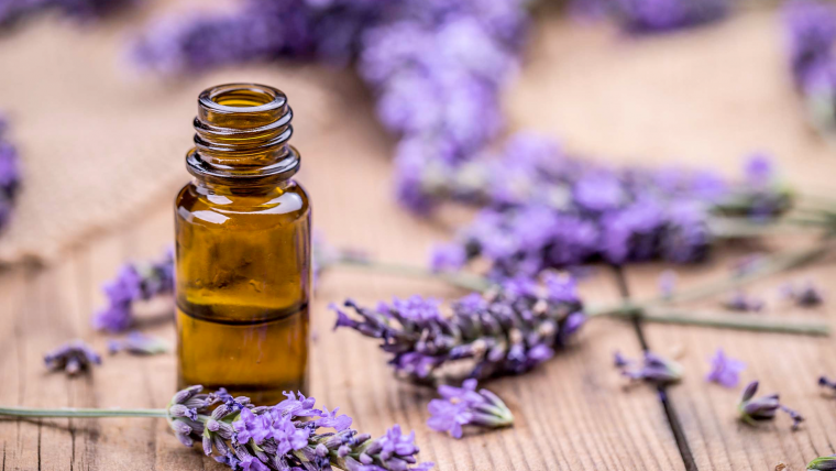 11 Best Essential Oils for Stress and Anxiety